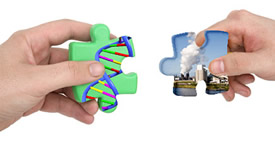 Gene Environment Interaction >> Gene Environment Research And Cancer Epidemiology
