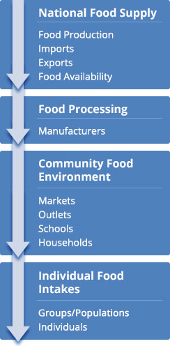 Image: an arrow shows the flow of foods through the four levels of the food stream: National Food Supply, Food Processing, Community Food Environment, and Individual Food Intake.
